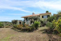 Well maintained quinta with comfortable house, Andorinha, Oliveira do Hospital