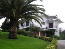 Very spacious villa with 2 ha of land, Oliveira do Conde, Carregal do Sal