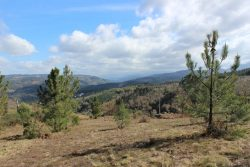 Building plot with spectacular views, Vila Cova de Alva, Arganil