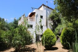 Summer offer: Quinta with house and outbuildings on an idyllic spot, Póvoa de Midões, Tábua