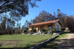 Detached wooden house (2 bedrooms) and guest house with garden and fruit trees, Vila Dianteira, São João de Areias