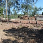 Building plot in Tábua for € 7.30 / m2