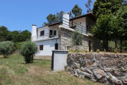 Fertile quinta with 2 bedroom house and beautiful view, Avô, Oliveira do Hospital