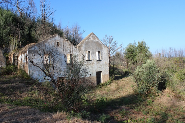 Quinta of 2.4 ha with a ruin of a house and partly classified as a business park, São Paio de Gramaços, Oliveira do Hospital