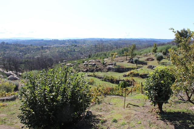 Quinta with private house and swimming pool on 1.2 ha with beautiful views, Travanca de Lagos, Oliveira do Hospital