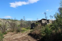 Two ruins of house and 3 ha of land on the river Seia, Andorinha, Oliveira do Hospital