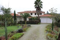 Quinta with 2 houses, 7 ha, and a small lake, Venda de Porco, Oliveira do Hospital